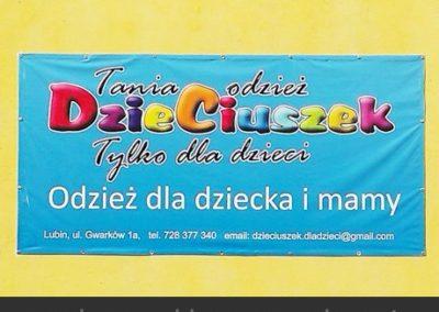 banery_reklamowe_w_lubinie_frontlit_polkowicach